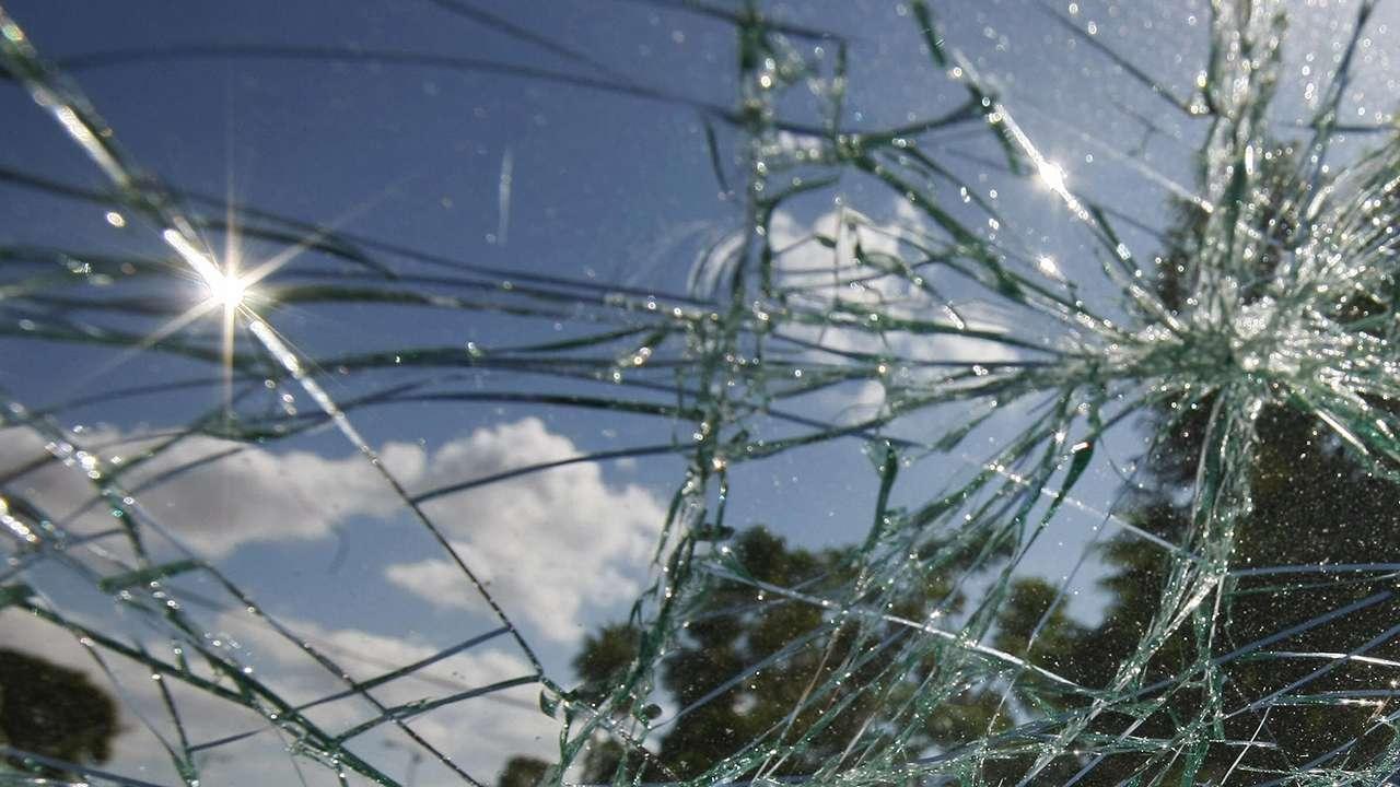 Tortuga vuela y choca contra el parabrisas de un auto en Florida