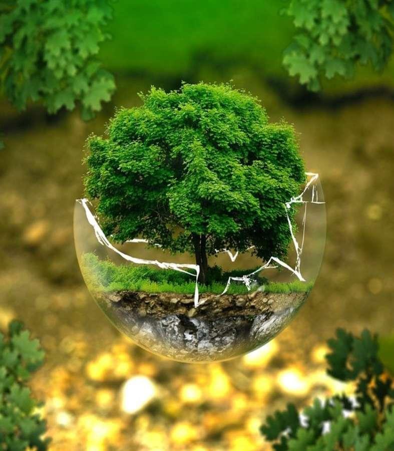 La Tierra no necesita ser salvada: Día Mundial del Medio Ambiente